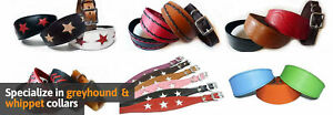 Wholesale Dog Collar Account Big Discounts On All Whippet, Greyhound Collars