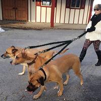 Nylon 3 Way Dog Coupler Leads Triple Leash No Tangle Adjustable for Three Dogs