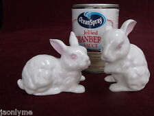 Meico two rabbits bunny Figurines Bone China RO China (S)