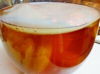 Live Organic Kombucha FRESH 4in Scoby Symbiotic CULTURE 1/2c STRONG STARTER TEA