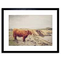 Highland Vaca Arte de la pintura original escocés Bolly P byshirley MacArthur