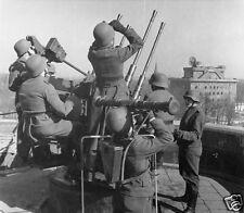 "German Anti-Aircraft Gun Crew Berlin Zoo 1942 World War 2, Reprint Photo 5x4"""