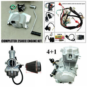 2021 Full 250cc Zongshen Engine PZ30 Carby Air Filter Wiring Harness ATV Quad