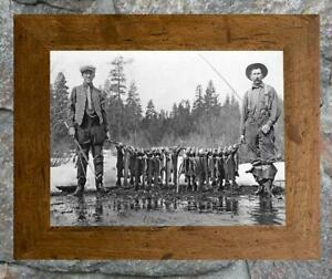 """Fantastic... Stringer of Trout & Fly Rods... Antique 8""""x12"""" Photo Print"""