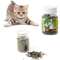 2g Fresh Organic Dried Catnip Nepeta cataria Leaf Flower Herb oz Bulk