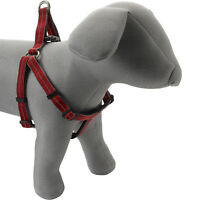 Petface Dog Puppy Harness with Neoprene Padding Comfort Durable Lightweight Red