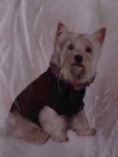 Dickens' Closet Sweater Pullover Chenille Confetti Style Collar Size Extra Small