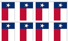 Texas State 12x18 Bunting String Flag Banner (8 Flags)