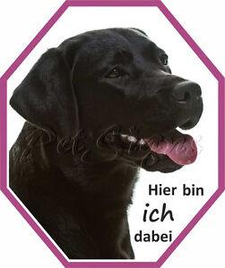 Auto Aufkleber Labrador Retriever - Dog Sticker Labbie, Foliensticker