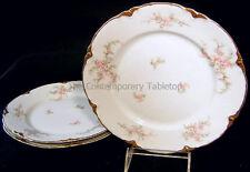 Vintage Warwick Heirloom Porcelain China (3) AVON Dinner Plates cottage roses