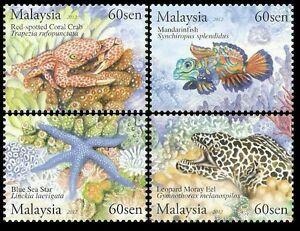 *FREE SHIP Underwater Life Malaysia 2012 Fish Marine Coral Shell (stamp) MNH