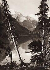 1925 Original CANADA Lake Louise Alberta Landscape Mountain Forest Nature Photo