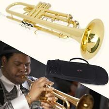 Trumpet Bb B Flat Brass Exquisite with Mouthpiece Gloves R5F7