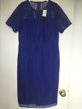 David Lawrence Ivy Lace Cobalt Dress - Size 12 - Brand New With Tag - RRP$299
