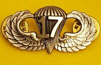 17th Airborne Jump Wing Badge US Army Parachutist Pin Military Insignia
