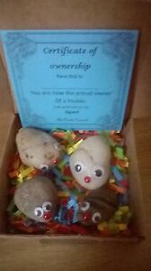 """Pet pebbles """"PEEBLES""""  with bedding, Owner Cert. and care sheet fun gift"""