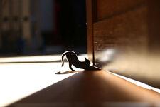 Door stopper Cat doorstop Door holder Hold the door Hodor Door hold Wood wedge