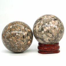 40mm Natural Gemstone Fossil Jasper Crystal Sphere Reiki Healing Ball Rare 1PC