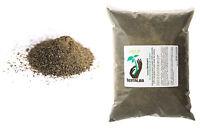 Kelp 25kg TERRALBA algue engrais germination hormones croissance défense