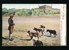 More details for turkey 1905-1915 postcards ppcs unused