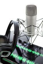 Pro Custom Voiceover, Dry Voice Over, Radio, TV, DJ, Disco, 150 words