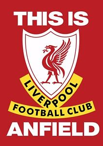 Canvas Print This Is Liverpool Wall Art Picture Size 20x30 Inch 18mm