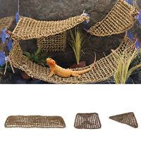 Bearded Dragon Hammock Reptile Lounger Snake Lizard Basking Platform