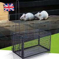 2x Metal Mouse catcher Trap Humane Live Catcher Rat Vermin Rodent Cage  Pest