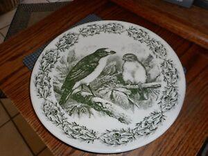 "Creative Co-Op Wild Life BIRDS 11"" Green Dinner Plate Decorative  NEW"