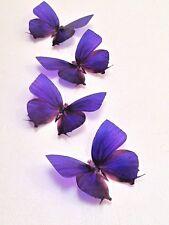 4 Cadbury Purple Butterfly Decorations in Flight 3D Butterflies Wedding / Home