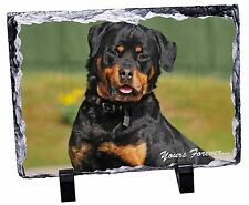Rottweiler Dog 'Yours Forever' Photo Slate Christmas Gift Ornament, AD-RW6ySL