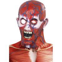 Horror Anatomía Hombre Máscara Rojo de Látex para Halloween Disfraz
