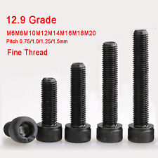 Zylinderschrauben DIN 912 Feingewinde 12.9 Grad ISK Zylinderkopf M6-M20 Schraube