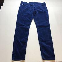 Gap Sz 32/14 Blue Velvet Skinny Pants A1278