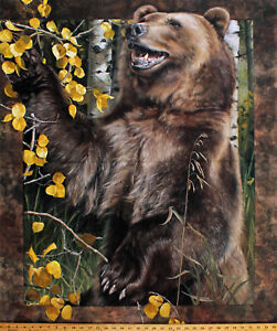 """35.5"""" X 44"""" Panel Brown Bear Grizzly Animal Trees Wildlife Cotton Fabric D483.31"""