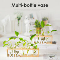 Glass Hydroponic Vase Flower Plant Pot Wooden Tray