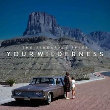 Pineapple Thief - Your Wilderness (NEW CD)