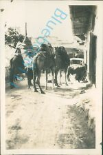 Corfu  Camels in the street  Taken by Navy officer HMS Ramillies 1930