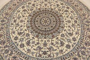 Naini Habibian 1,0 Mio, Kn / Qm M. Silk Persian Carpet Oriental Rug 2,36 X 2,36