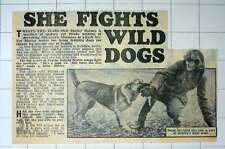 1952 22 Years Old Shirley Holmes Fights Wild Dogs Birkdale Southport Kennels
