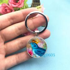 Blue Bird Art Photo Tibet Silver Keychains Rings Glass Cabochon Key chain -44