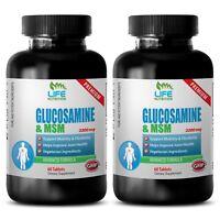 Chondroitin Powder - Glucosamine Chondroitin MSM 3230 - Boost Joint Health 2B