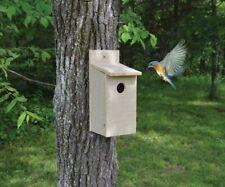 Bluebird Birdhouse Setc103