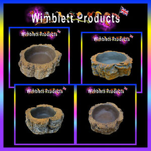 Reptile Geckos Spiders Snakes Lizards Water Food Bowls, Dishes