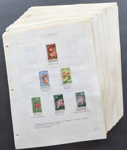 EDW1949SELL : WW TOPICAL Flowers. All sets & S/S mostly NH from Africa. Cat $501