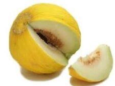 200 Seeds Casaba Golden Beauty Melon Seeds