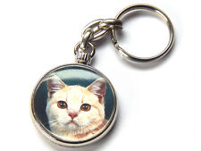 BRITISH SHORTHAIR CREAM TABBY Cat Quality Chrome Keyring Picture Both Sides