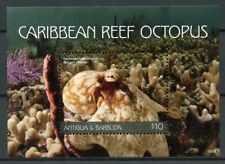 Antigua & Barbuda 2018 MNH Caribbean Reef Octopus 1v S/S Marine Animals Stamps