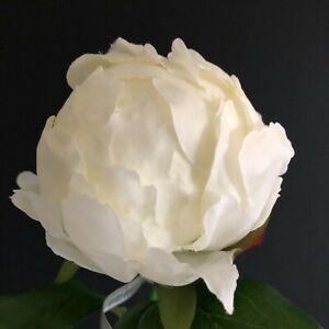 hybrid peony bud cream faux/silk stem H45cm