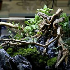 Driftwood Trees Trunk Aquarium Decorations Natural Wooden Fishes Tank Decors New